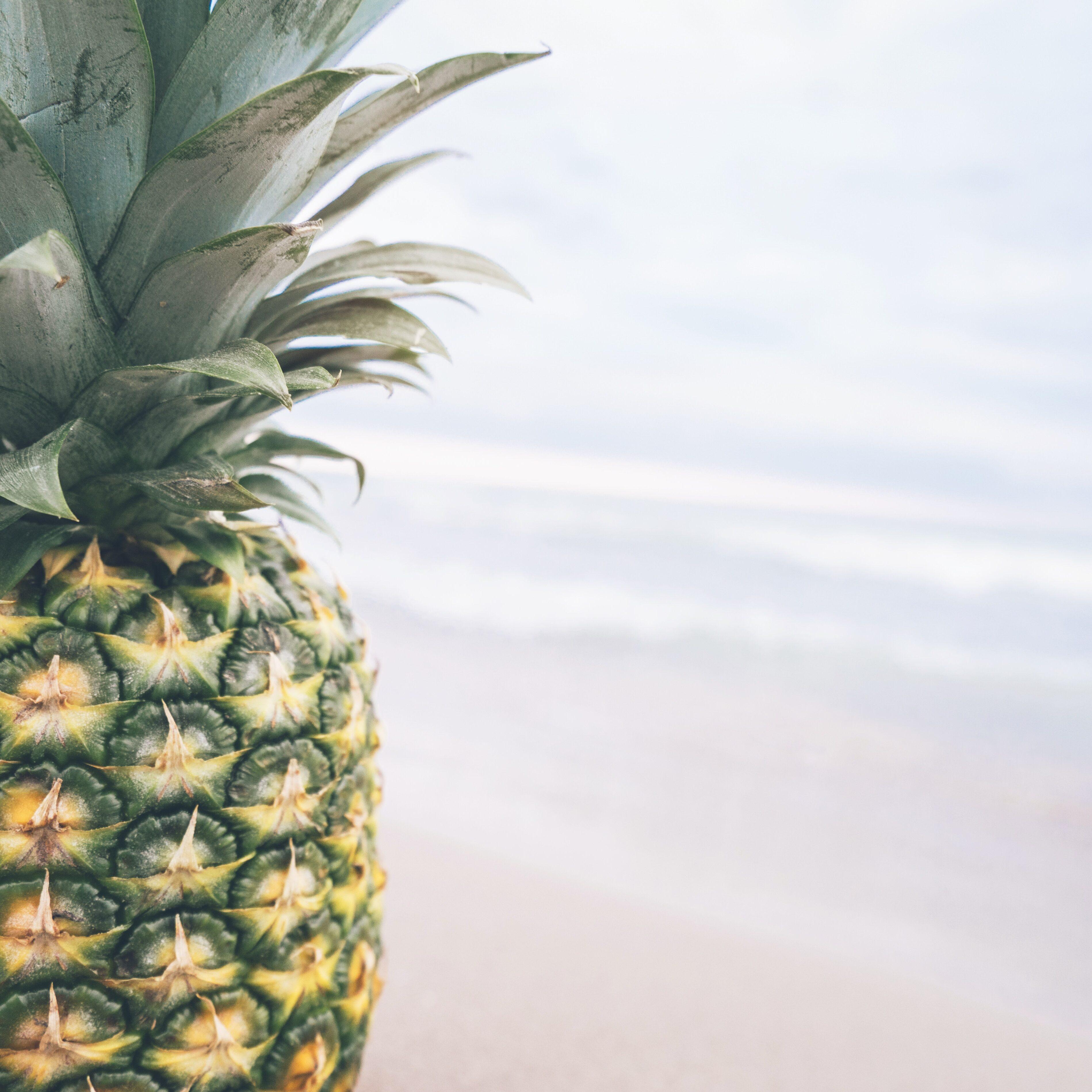 beach-food-fruit-137113