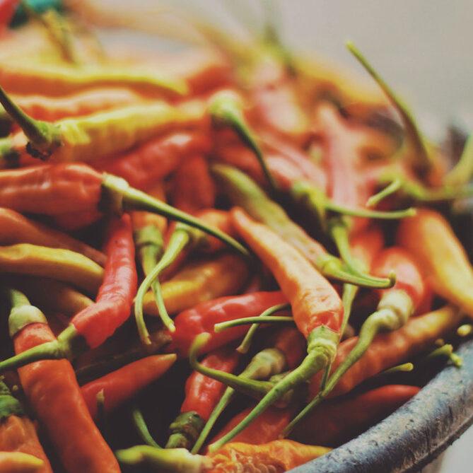 what-makes-salsa-hot